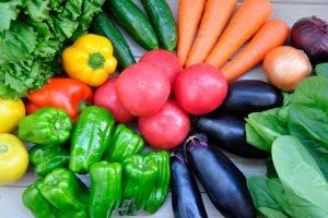 公庫と農林中金が出資のアグリビジネス投資育成㈱が農業支援を活性化中!